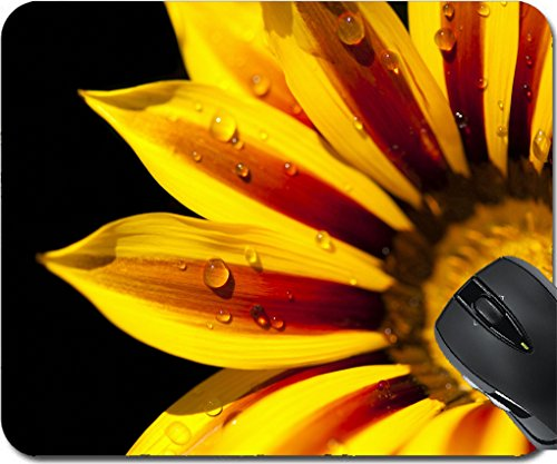 Blossom 702 (MSD Mousepad Mouse Pads/Mat design 20176806 Wonderful gazania with water drops in a black background)