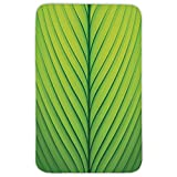 Rectangular Area Rug Mat Rug,Green,Wavy Striped Texture of a Green Leaf Macro Close Up Graphic Fresh Plant Decorative,Lime Green Apple Green,Home Decor Mat with Non Slip Backing