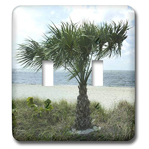 Palm Beach Landscape Lighting in US - 6