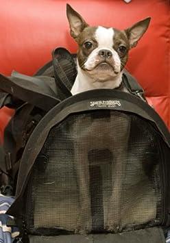 STURDI PRODUCTS SturdiBag Pet Carrier