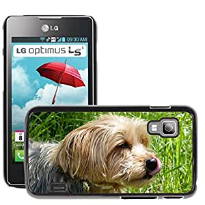 Super Stella Slim PC Hard Case Cover Skin Armor Shell Protection // M00148574 Yorkshire Terrier Dog Dog Breed // LG Optimus L5 II Dual E455 / E460