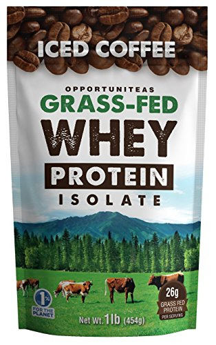 Coffee Protein Powder - Grass Fed Whey Isolate + Colombian Coffee - Delicious Workout & Exercise Supplement for Smoothie, Shake, or Drink - No Artificial Chemicals, Sweeteners, or Flavorings - 1 lb (Best Tasting Grass Fed Whey Protein Powder)