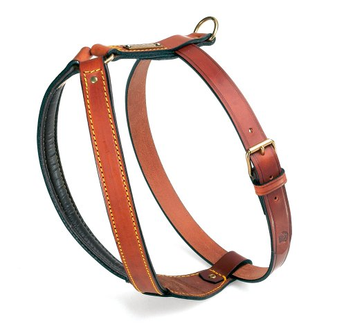 Petego La Cinopelca Padded Calfskin Harness designed for Pit Bulls, Brown, Fits Neck 16 Inches to 19 Inches, Chest 29 Inches to 32 Inches