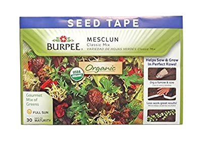 Burpee 69711 Certified Organic Seed Tape Mesclun Classic Lettuce Mix 22.5 Ft 645 Seeds