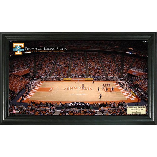 Tennessee (Ladies) Stadium Photo Stadium Ncaa Photo Mint