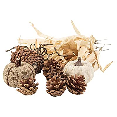 The Royal Standard Rustic Harvest Assorted Artificial Corn Husk Sprays and Pinecones Vase Filler