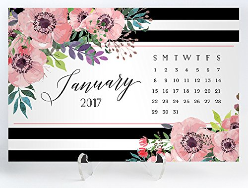 2017 Desk Calendar with Clear Acrylic Stand Black & White Stripe Pink Anemone Planner Cards Office Gift 4 inches x 6 inches Elise (Anemone Pouch)