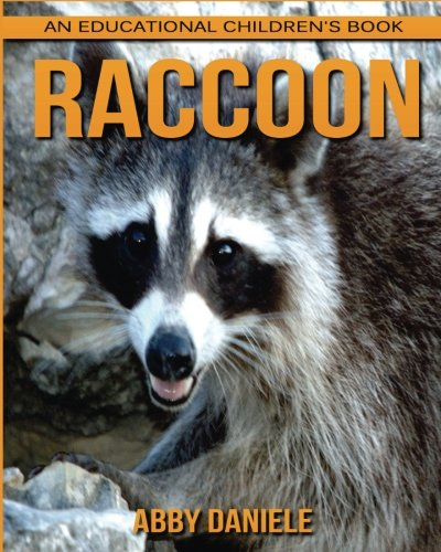Download Raccoon! An Educational Children's Book about Raccoon with Fun Facts & Photos pdf