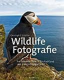 Wildlife-Fotografie: Frei lebende Tiere in Deutschland und Europa fotografieren