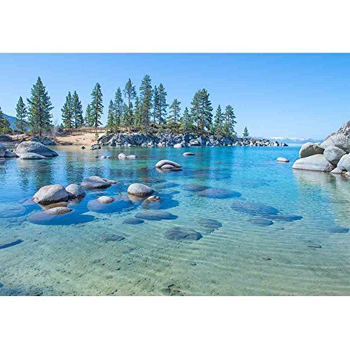 wall26 - Beautiful Blue Clear Water on The Shore of The Lake Tahoe - Removable Wall Mural | Self-Adhesive Large Wallpaper - 66x96 inches by wall26 (Image #1)