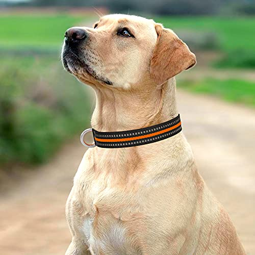 Domagiker Reflective Adjustable Dog Collar - Nylon Basic Puppy Collar with Quick Release Buckle, Dog Walking Safety Pet Collar for Small Medium Large Dogs (Neon Orange, Large)