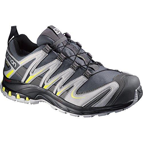 Salomon Herren XA Pro 3D GTX Quicklace Turnschuhe/Sportschuhe/Trekking-Schuhe mit Schnell-Schnür-System Radiant Rot