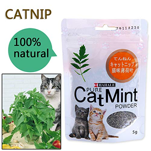 Catnip Toys - Menthol Flavor Cat Treats Digestive Pet Supplies Promotional Premium Catnip Cat Mint Natural Pet Food Organic Funny Toy