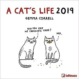 2019 A Cat S Life Calendar Humour Calendar 30 X 30 Cm Amazon Co