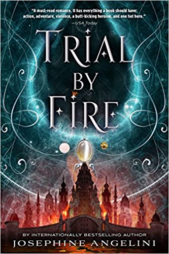 Image result for trial by fire book