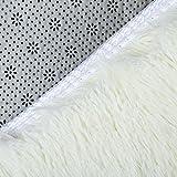 ACTCUT Super Soft Modern Shag Area Silky Smooth
