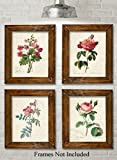 Paris Botanicals Art Prints - Set of Four Photos (8x10) Unframed - Great for Bedroom/Bathroom Decor
