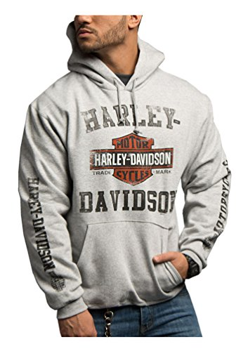 Harley-Davidson Men's Tranquil Road B&S Hooded Sweatshirt, Gray 5642-HE21 (L)