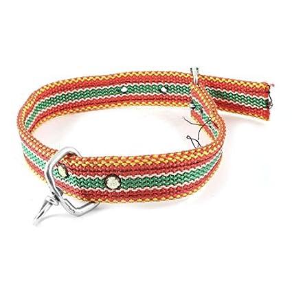 Amazon.com : DealMux cão de estimação único Prong Buckle 3 Furos Collar ajustável, Vermelho / Verde : Pet Supplies