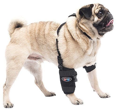 Caldera Pet Therapy Universal Wrap Carpal/Elbow with Gel,...