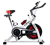 Tauki Indoor Upright Exercise Bike W/ LCD Monitor Cycling Bike for Health and Fitness, White Review