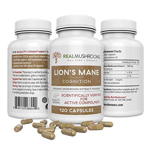 Lions Mane Mushroom Cognition Capsules (120 Capsules) Lions Mane Mushroom Powder Extract Capsules | Brain Supplement…