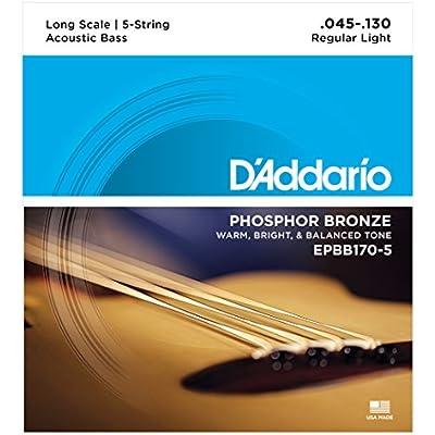 daddario-epbb170-5-phosphor-bronze