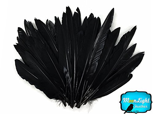 Moonlight Feather | 1/4 Lbs - Black Duck Pointer Primary Wing Wholesale Feathers (Bulk) Halloween Costume Craft DIY Supply ()