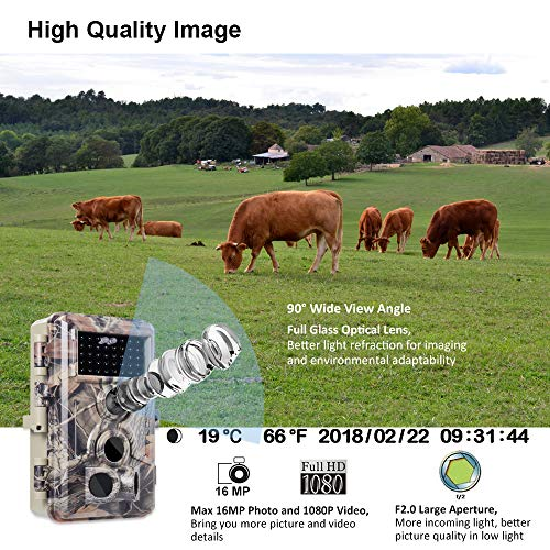 Buy trail camera under 200