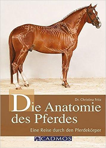 Die Anatomie des Pferdes: Eine Reise durch den Pferdekörper Cadmos ...
