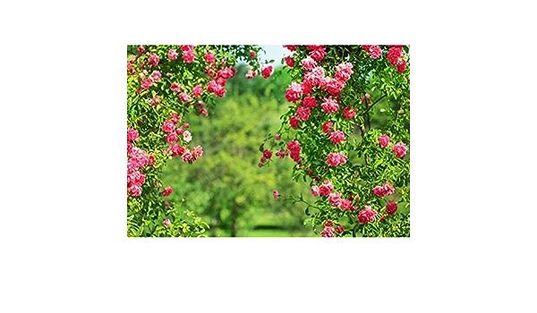 ALUONI 7x5ft Watercolor Flower Home Decor,Hazy Paint of Nature Elements Botanic Backdrop Vintage Photo Background Cotton for Booth Graduation Prom Decor No Wrinkle AM033484