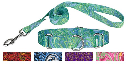 Country Brook Design Green Paisley Martingale Collar & Leash - Medium