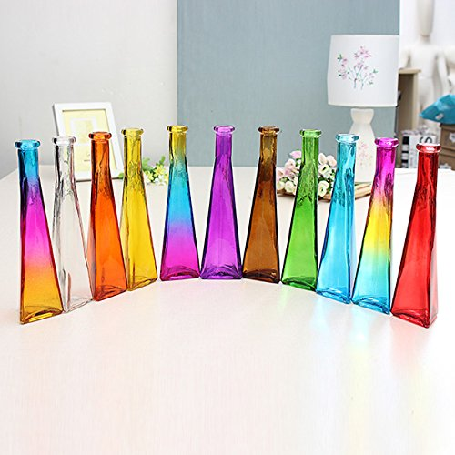 Color Clear Mini Glass Vase Zakkz Flower Bottle Glass Ornaments Flower Arrange Home Decor (Random: Color)