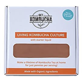 All Natural Organic Kombucha SCOBY - Largest Kombucha Mother Cultures In North America - Non Dehydrated, (6.5 inches in diameter) - Shipped With Organic Living Starter Tea Liquid 5 Makes A Lifetime of Kombucha Tea, 1 Gallon At A Time! Certified organic and fair trade ingredients used for both the kombucha mother and starter liquid 10+ years of providing the largest cultures in all of North America to thousands of home brewers