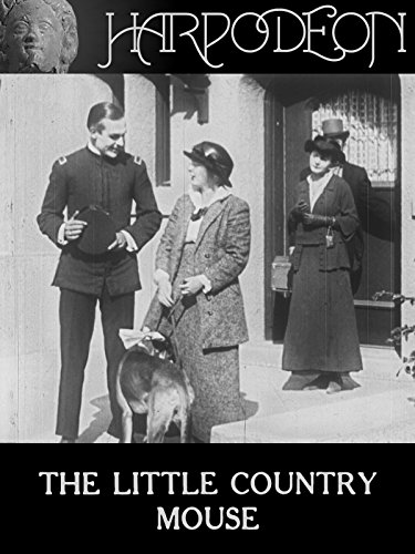 The Little Country Mouse