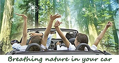 Earth-Air Car, Truck, & RV Air Purifier ★ Eliminate Odors From Cigarettes, Pets, Mold, Bacteria, Viruses, & Other Headache & Asthma Causing Contaminants ★ Improve Health & Remove Pollutants With This Premium Auto Ionic Air Freshener Car Accessory ★