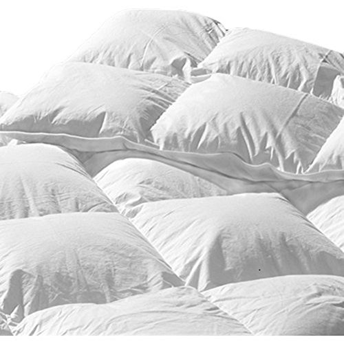 Highland Feather Manufacturing 29-Ounce La Palma Goose Down Duvet, King, White
