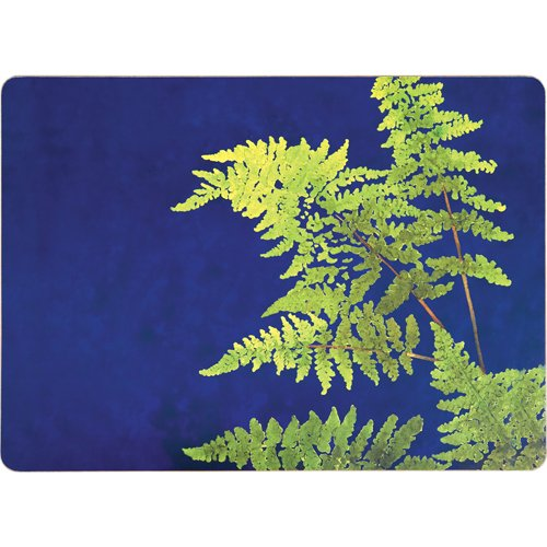 Placemats Table Mats Cork Backed Hard Placemats Wipe Clean Fern Design 12