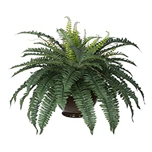 House of Silk Flowers Artificial Fern in Brown Fishbowl Vase 2