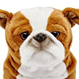 toy for english bulldog - Animal Alley - 10.5 inch English Bulldog Plush - This Sweet Pup would just Love to be Your New Best Friend!