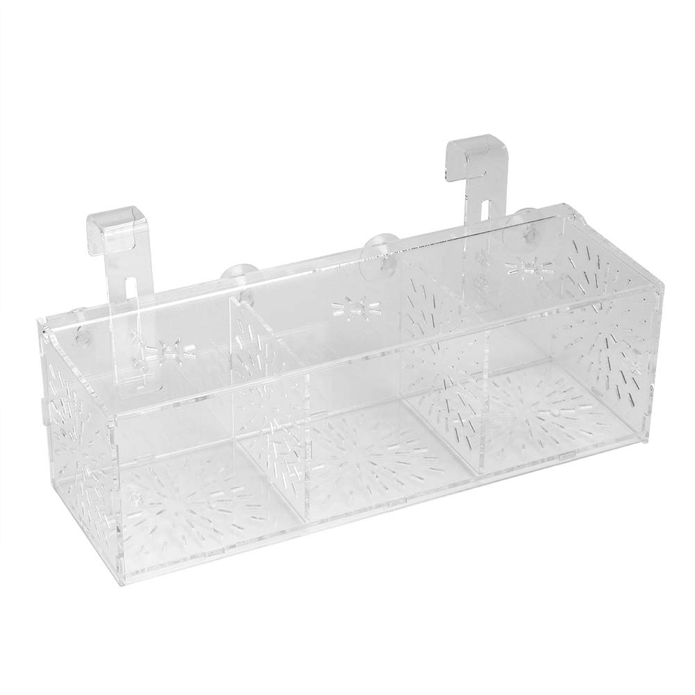 Pssopp Fish Tank Breeding Isolation Box Breeder Isolation Divider Hatching Box Acrylic Transparent Aquarium Hatchery Incubator Holder(30CM10CM10CM) by Pssopp