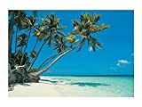 Tropical Beach Backdrop Banner (9 Ft. X 6 Ft.) Vinyl