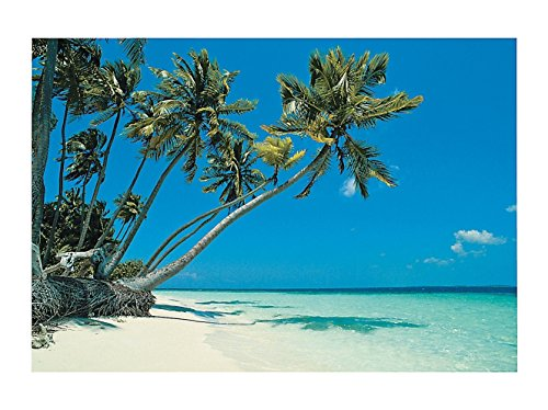Tropical Beach Backdrop Banner (9 Ft. X 6 Ft.) -