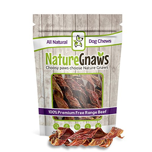 Nature Gnaws Beef Jerky Springs 7-8