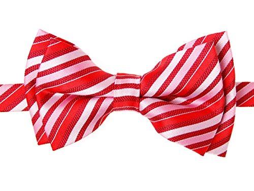 Retreez Retro Multi Tone Stripe Woven Microfiber Pre-tied Boy's Bow Tie - Red - 4 - 7 years