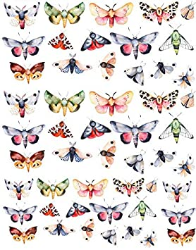 48398 Choose Ceramic or Glass Decal Choose from 3 Different Sizes Colorful Moths Butterflies