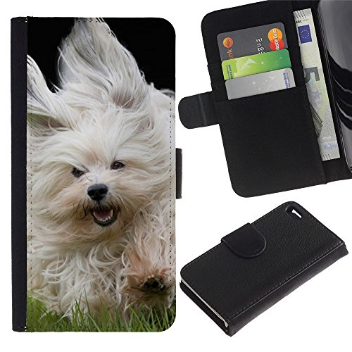 EuroCase - Apple Iphone 4 / 4S - Bichon Frise Havanese terrier - Cuir PU Coverture Shell Armure Coque Coq Cas Etui Housse Case Cover