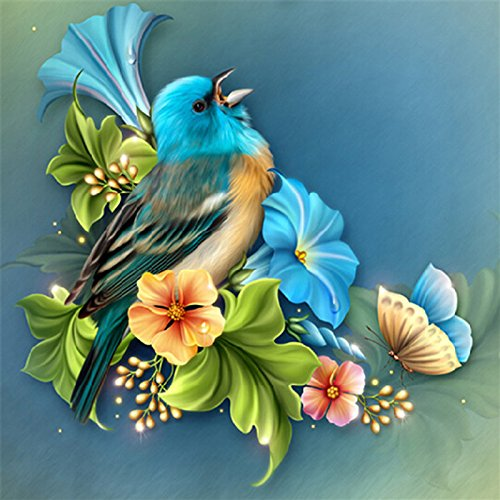 Jollylife Art - Diamond Painting Kits Full Square Beads Embroidery DIY Cross Stitch for Adults Kids New Beginners, Blue Bird, 30x30cm by jollylife