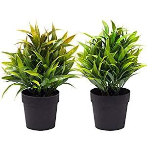 Binnice Artifical Plant with Black Plastic Pots Fake Plants for Your Home Office Party Wedding Decoration, Set of 2 Potted 9