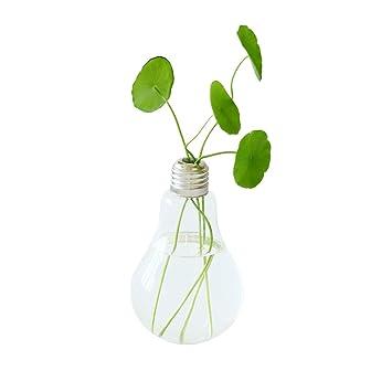 Review Ivolador 2PCS Lightbulb Glass